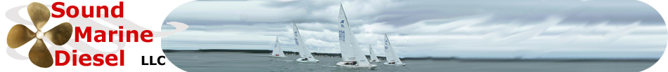 smd logo and sailing boats